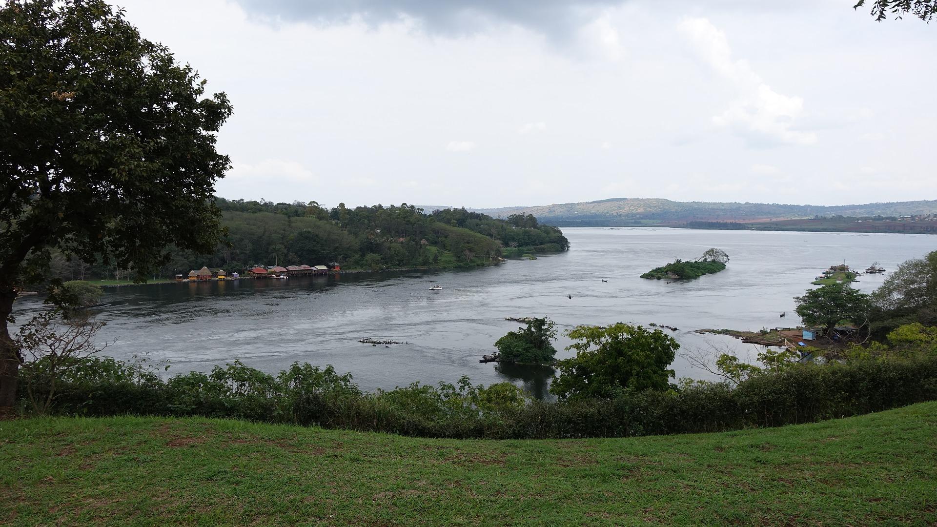 Jinja View