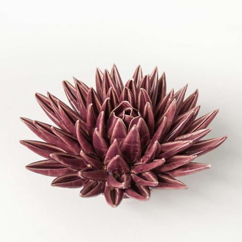 Porzellan Blüte, bordeauxrot