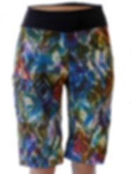 MOUNTIAN SHORTS GROOVY.png