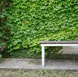 chair046_1.jpg