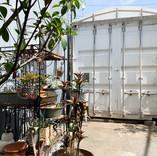 Garden-011.jpg
