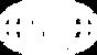 DQS-Logo-Global (1)negativ 150px.png