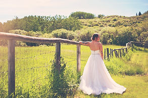 Ray Fence and Bride 3.jpg