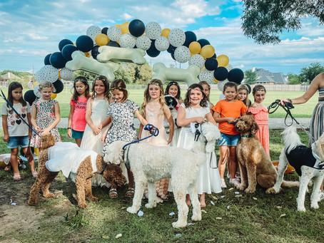 Katy Girls Plan the Dog Wedding of Year