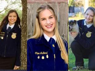 Katy ISD FFA Students Earn Prestigious $20,000 Scholarships