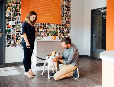 Dogtopia Comes to Katy; Offering Daycare, Boarding, Spa, and Events for Dogs