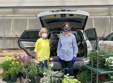 Coronavirus Forces Katy Events to Cancel, Non-Profits Losing Millions