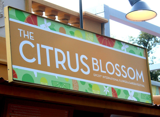 FOOD REVIEW: Citrus Blossom at Epcot Flower & Garden Festival