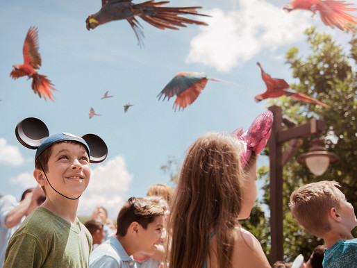 Party For the Planet Returning Next Week at Disney's Animal Kingdom.