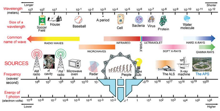 electromagnetic-spectrum-Holotypehealth.jpg