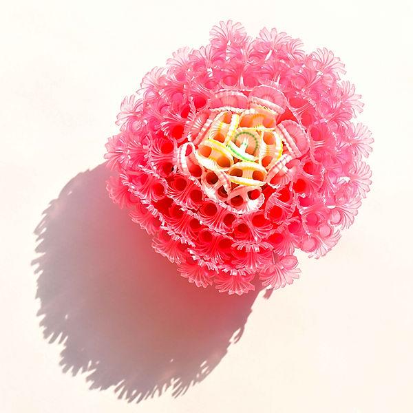ROSE brooch Asami Watanabe 01.jpg