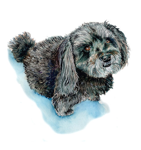 CUSTOM - PET PORTRAIT - N/A
