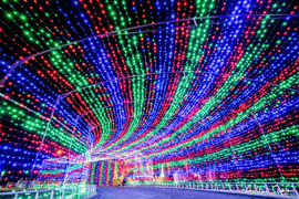 2019 Trail of Lights Tunnel