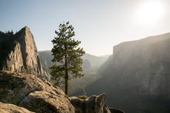2019-08-02 Yosemite, CA.jpg