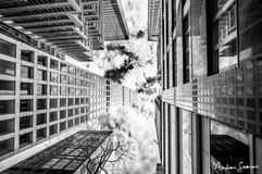 2019 NYC Extreme Linear Perspective B&W