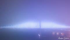 2019 Shrouded Bay Bridge