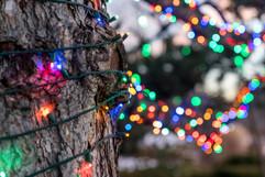 2017 DBG Lights