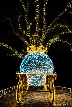 2019 Trail of Lights