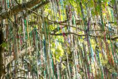 2019 Year-Round Mardi Gras Beads