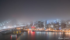 2019 Fog Bisection