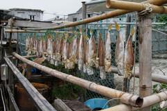 2015 Tai O Fishing Village