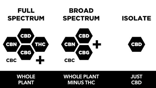 Differences-between-Full-Spectrum-CBD-Br