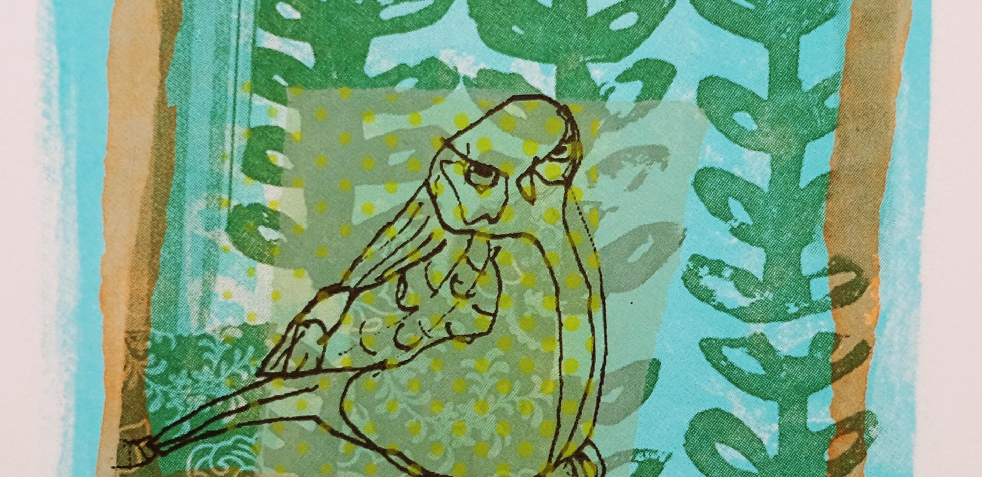 bird in the bush.JPG
