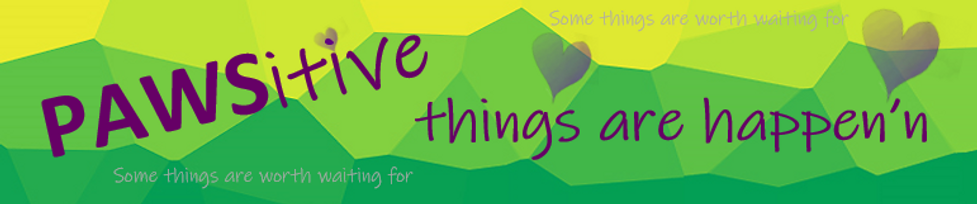 Pawsitive things are happening logo.PNG
