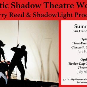 Cinematic Shadow Theatre Workshop July 2019