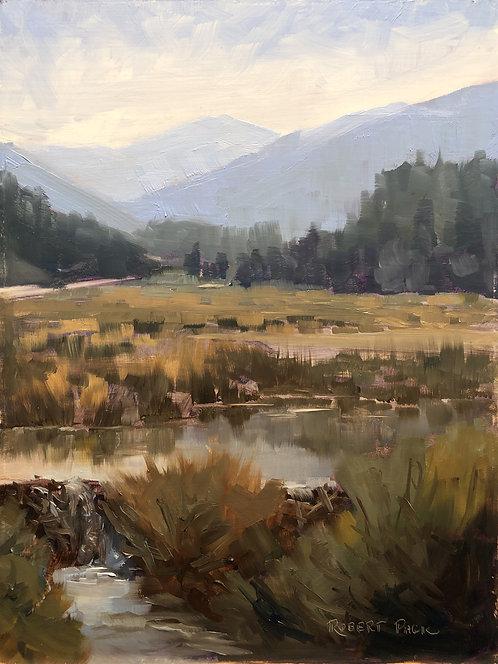 "Beaver Dam Pool (9"" x 12"")"