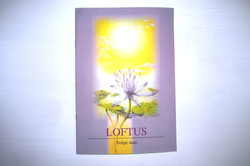 Catálogo Loftus (serie LotLuz) 2002