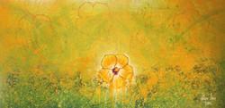 YellowLuz (20).Amarillento