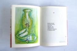Libro 20 Rosas de Lluvia.2