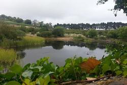 La Laguna (11)