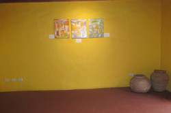 Exposición (7)