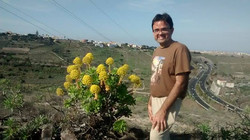 Junto a Flores amarillas