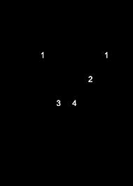 Minor (1).png