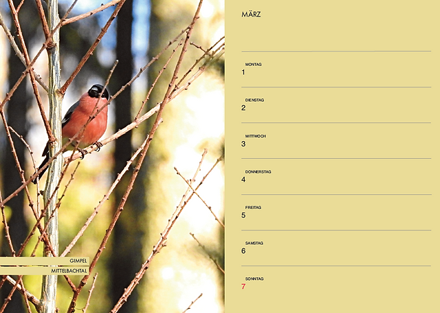 Bildschirmfoto 2021-04-22 um 09.21.01.pn