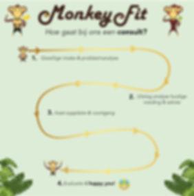 Consult journey Monkeyfit-01.jpg