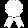 iconmonstr-award-5-240(1).png