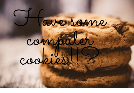What are computer cookies? -thebytewise