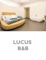 17.LUCUS.jpg