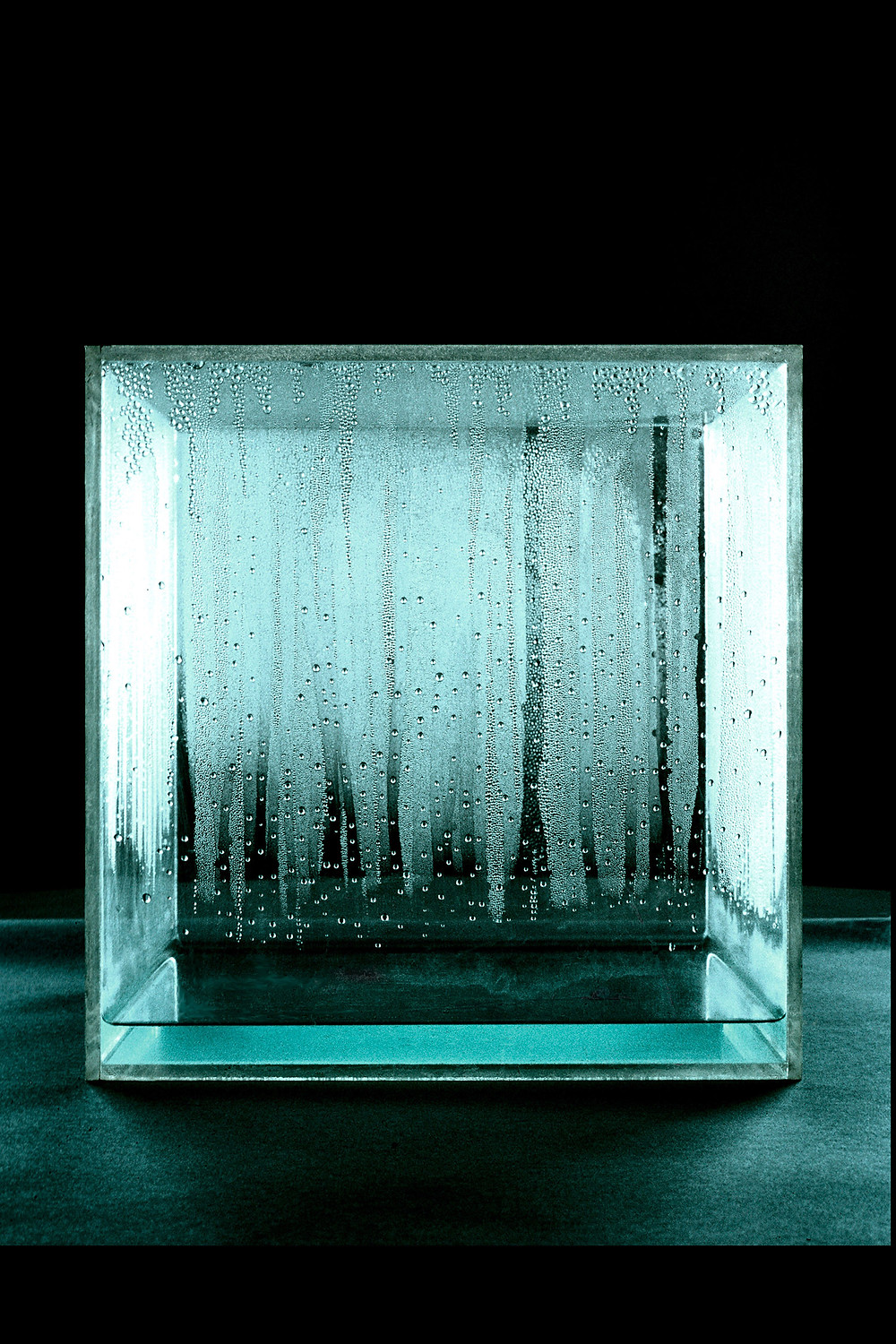 Condensation-Cube,196-065. Photo courtesy NEW MUSEUM