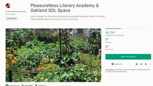 PleasureNess Kickstarter