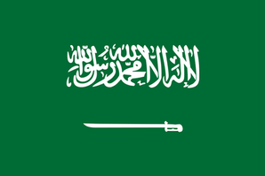 Saudi Arabia - Improving Social Services