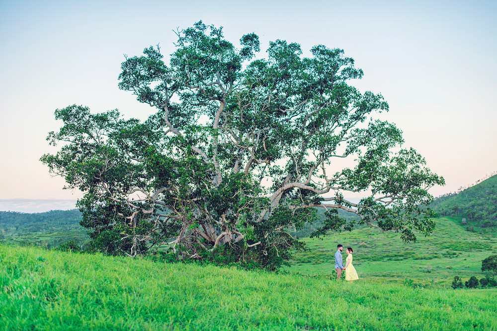 Rockhampton, Yeppoon, Byfield, Gladstone, Agnes Water 1770, Mackay, Emerald,  Central Queensland Photographer