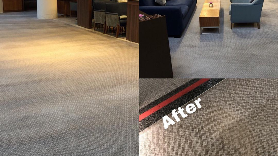 Carpet Cleaning Hotel Sofitel
