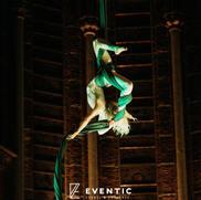 Emtelle entertainment customer event