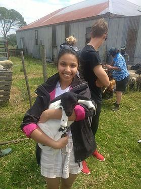 Wild Inside Adventures Veterinary Volunteer Programme South Africa Community Work Farm Livestock