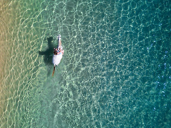 A grey horse in the sea in Mozambique - aerial view.
